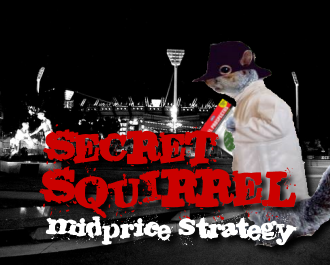 Mid-price strategy: Secret Squirrel