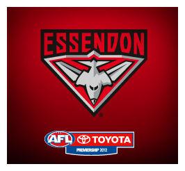 Essendon Bombers: AFL Dream Team Picks