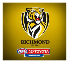 Richmond Tigers: AFL Dream Team Picks
