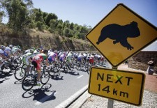 Fantasy Cycling TDU – Panic sheet